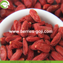 Pasokan Pabrik Natural A Grade Fruit Goji Berries