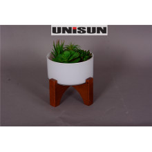 Bonsai for Home Decor in Evergreen Plant with Wood Base (18-HF3959A)