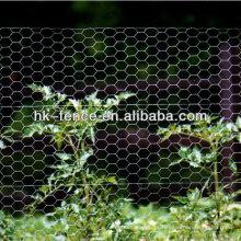 Rede de arame sextavada galvanizada da gaiola de galinha