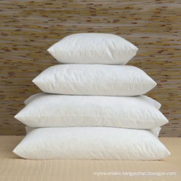 Lianying Soft and Heathy Memory Foam Pillow Insert