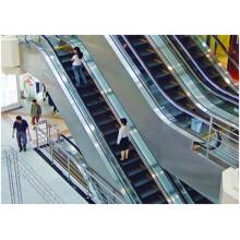 Escaliers mécaniques durables et sécurisés pour le centre commercial
