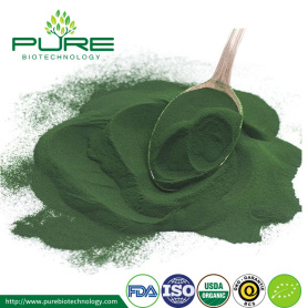 Patah dinding sel Natural Chlorella Powder