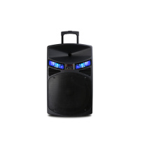 Multifuncional Bluetooth Portable Active Trolley Speaker com FM