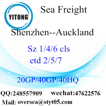 Shenzhen Port Sea Freight Shipping ke Auckland