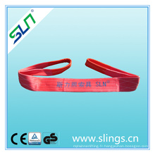 Sangle de levage de sangle de polyester de 5tx3m 100% avec le certificat de ce GS