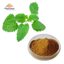 Anti-anxiety rosmarinic acid melissa officinalis herb leaf lemon balm extract powder