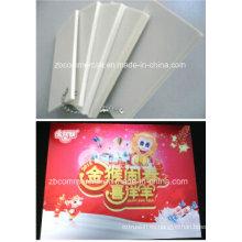Hoja / tablero / panel / placa de espuma de cloruro de polivinilo (PVC)