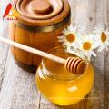 Miel pur bon marché pour l'alimentation des abeilles