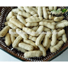 2014 Crop JINLIN Province China Origin Peanut Inshell