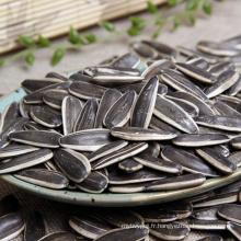 Tournesol Mongolie intérieure Vente chaude non gmo graines de tournesol