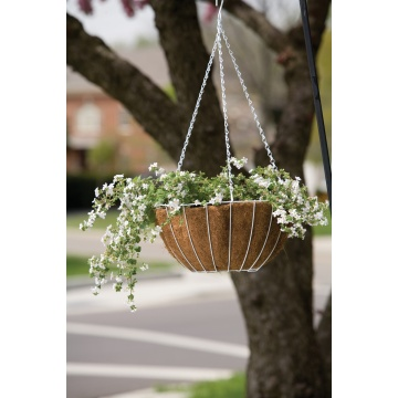 Growers Hanging Basket termasuk liner
