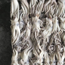 High Quality Frozen Illex Squid Head Squid Tentacle
