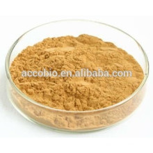 food grade high quality Hoodia Cactus Extract 10:1