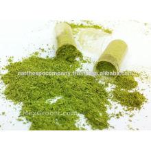 Halal Certified Moringa leaf powder from India