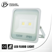 New Design White Reflector 100W High Lumen 70-80lm/W COB LED Flood Light