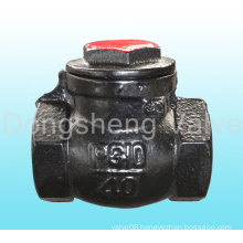 Cast Iron Threaded End Swing Check Valve