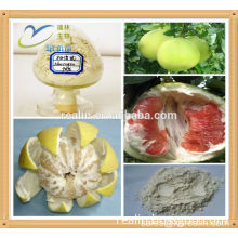 High quality Grapefruit Extract Bulk supply Naringin powder