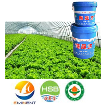 Seaweed Microbial Organic Water fertilizer for agriculture (Seedling Care)