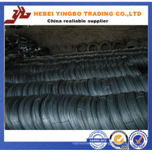 AISI Electro Galvanized Iron Wire with Different Package