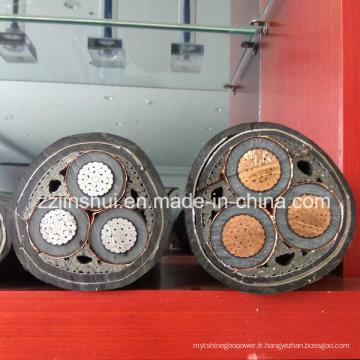 XLPE isolé Copper Aluminium Conductor XLPE Fire Resistant Cable Prix