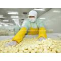 Frozen Natural Garlic Segment Cloves