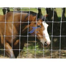 Malla de alambre de la cerca de la protección de la pradera de la casa (fábrica)