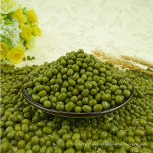Chinese dried green mung bean