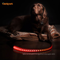 Strong Nylon Recharge Led Luminous Dog Leash
