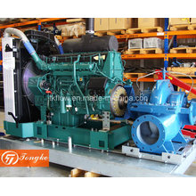 Diesel Engine Water Pump (set)