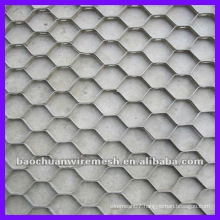 410S Tortoise sheel net with high quality supplier