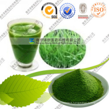 Super Food Green Magma Barley Grass Juice Powder