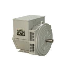 Трехфазный бесщеточный генератор с частотой 8,1 кВА (JDG164A) 50 Гц