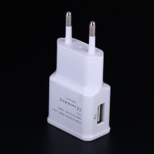 China Top 10 for Dual Usb Charger 5V2A european usb power adapter supply to Netherlands Suppliers