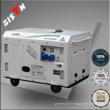 BISON Chine Taizhou 7.5 kw Alibaba Site Web AC Single Phase CE Standard 7500 Watt Diesel Generator
