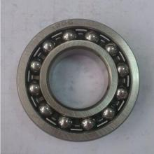 1205 Double Row Self Aligning Ball Bearing