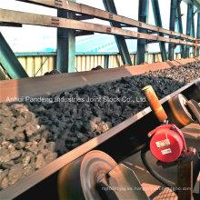 Banda transportadora / correa transportadora resistente a las llamas con canal textil Pvg