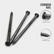 Professional Common Bulidingiron Wire Nails with Nice Price