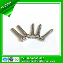 Slotted Stainless Steel Bolt Screw