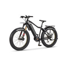 Wholesale Full Suspension 48V 750W Electric Bike with Fat Tire