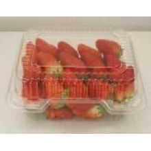 Blister Pack for Strawberry or Other Fruit (HL-110)
