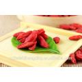 Non- Organic Air Dried Red Goji Berry Fruit