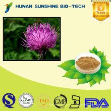 Silybum Marianum Milk Thistle Seed Extract Delay Senescence & Como resaca
