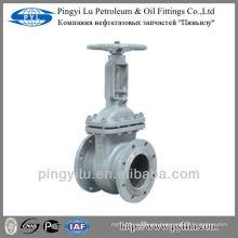 Acero al carbono GOST válvula de compuerta en la industria de petróleo o gas