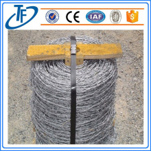 Cheap price anti-climb concertina barbed wire