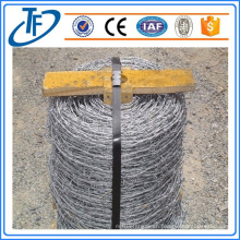 Steel Barbed Wire With Plate Used For Sale Made in Anping (China Supplier)