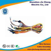 A fábrica de Shenzhen fez o chicote de fios do fio da lâmpada do conjunto de cabo auto