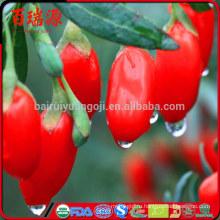 Новый урожай купить ягоды годжи ягоды годжи побочные эффекты, что такое ягоды годжи