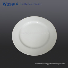 11 inch Good Sale Porcelain Plate For Wholesale