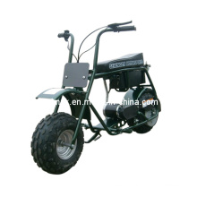 Strong Charging Capacity Electric Vehicle ATV
