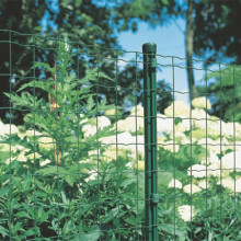 Dark Green PVC Coated Light Euro Fence